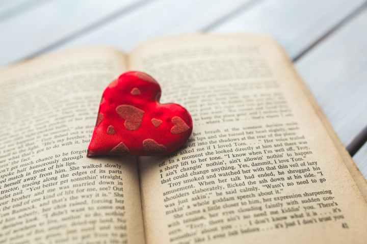 Happy Valentine's Day from the Anaiahauthors!