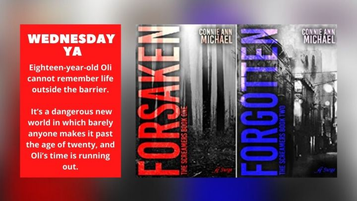 Wednesday YA: The Screamers series by Connie AnnMichael